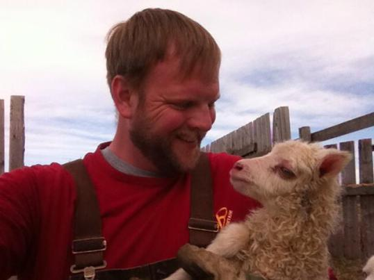 The very first lamb of 2014!